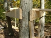 tree fort closeup- wood borrowed