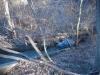 sluiceway channel overgrowth
